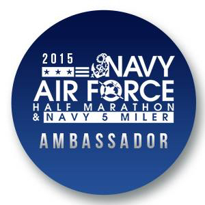 NavyAirForceBadge